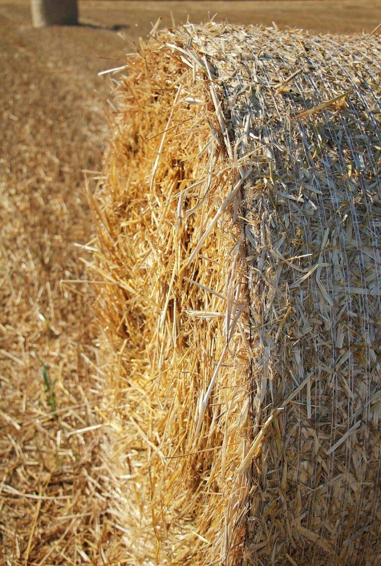 straw role, harvest, straw-1529016.jpg